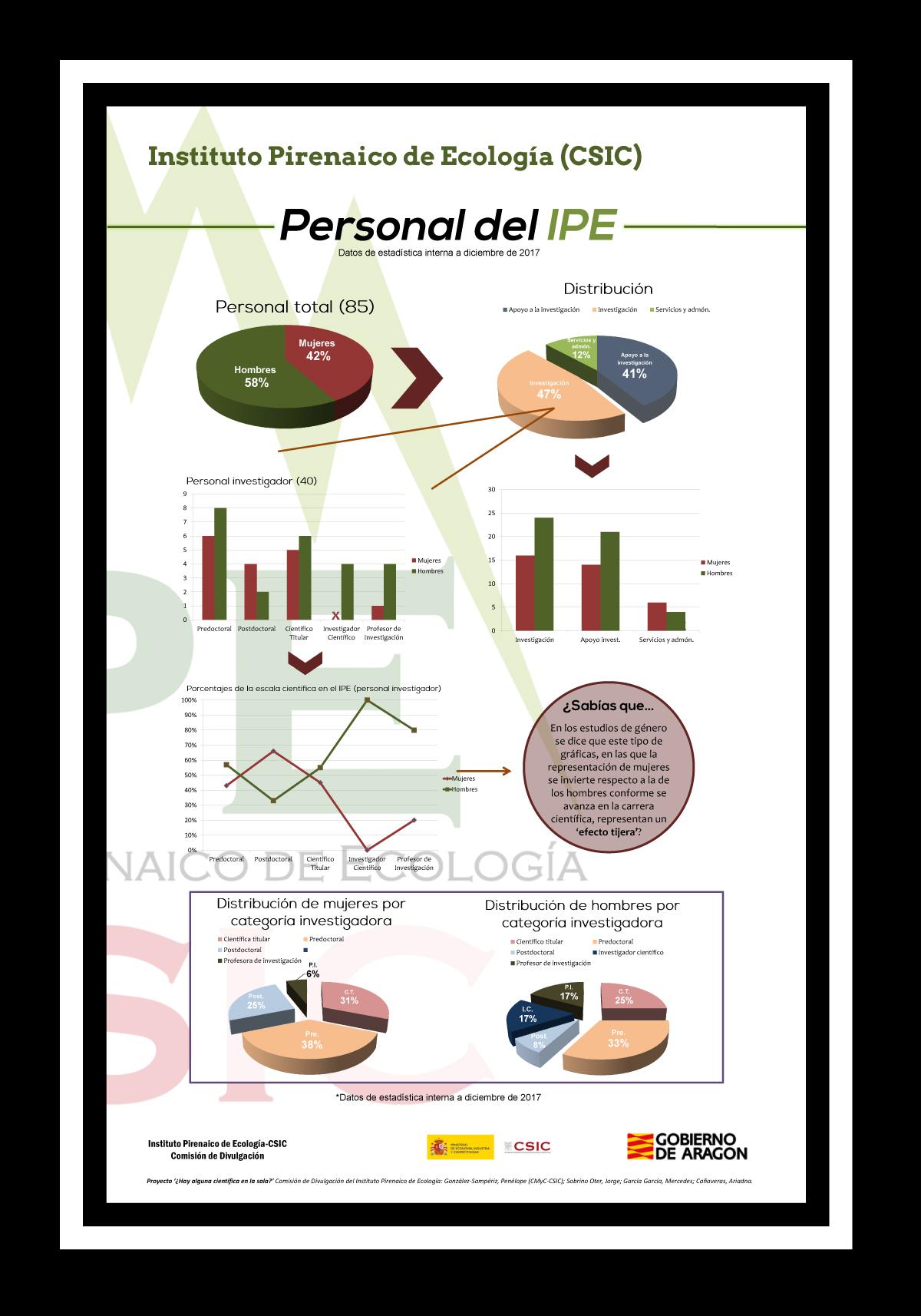 Personal del IPE