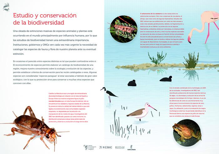 Estudio y conservación de la biodiversidad