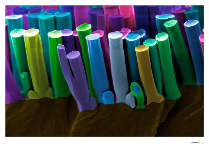 Nanopilares adhesivos
