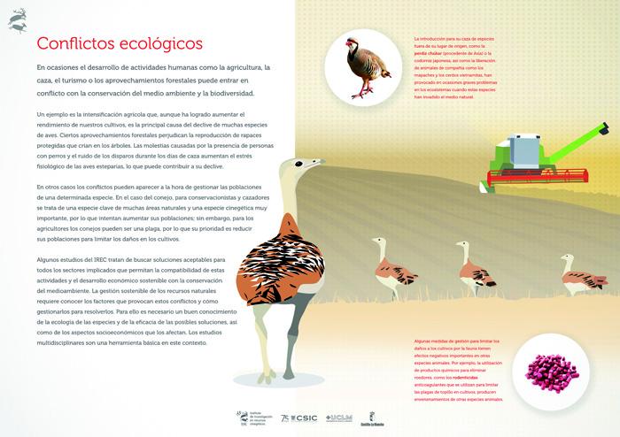 Conflictos ecológicos