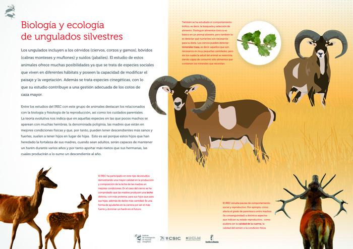 Biología y ecología de ungulados silvestres