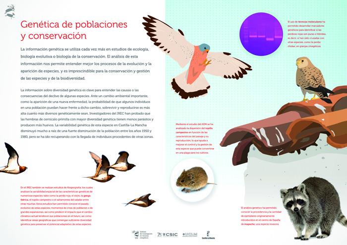 Genética de poblaciones y conservación