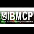 IBMCP