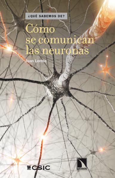 Portada Cómo se comunican las neuronas