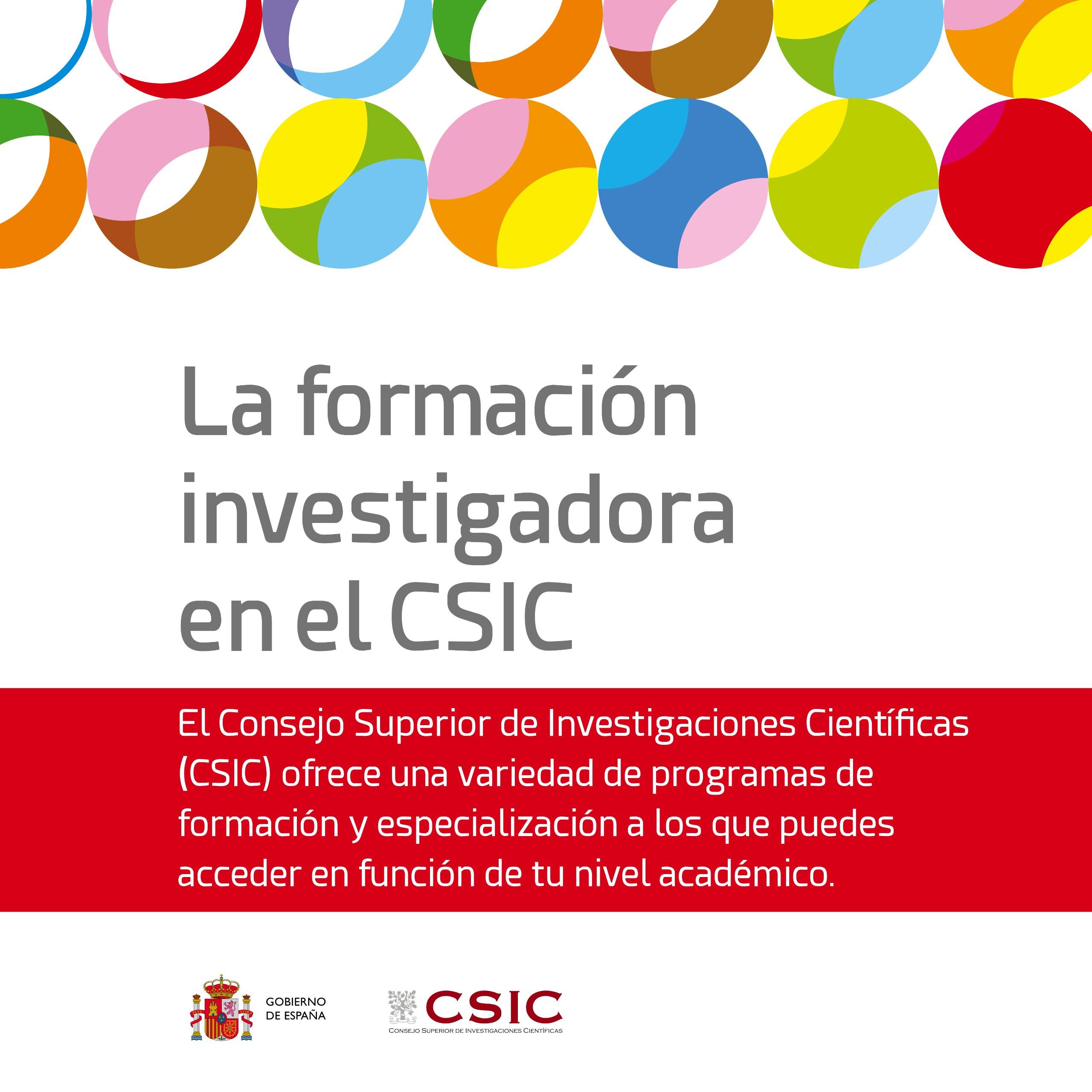 FORMACIÓN INVESTIGADORA - cover